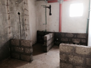 Walls in the toilet area.
